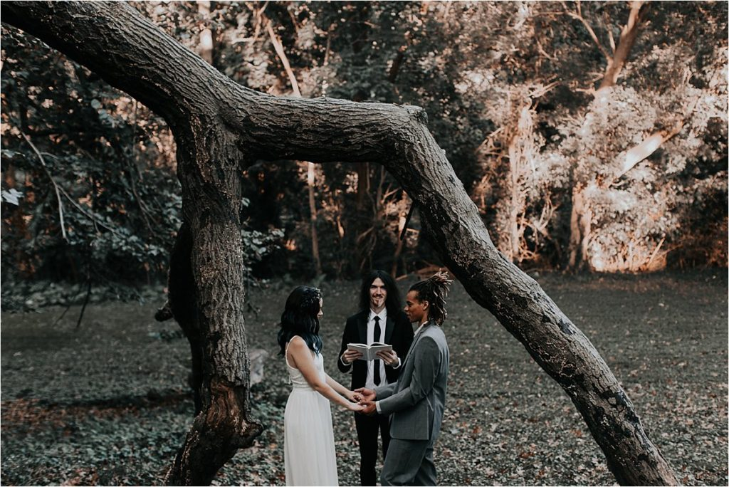 2018-01-16_0028-1024x684 Celestial Forest Elopement Styled Shoot